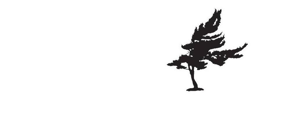 WEBIMAGES: tree_websitehome.jpg